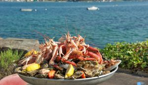 restaurant dégustation saint guillaume fruit de mer vue sur mer